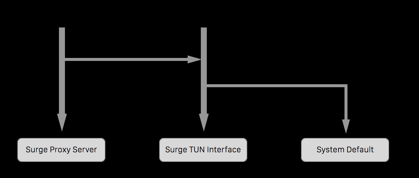 surge -guide